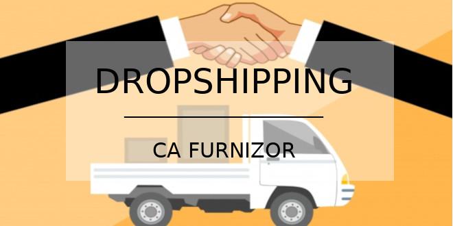 dropshipping ca furnizor